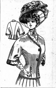 Vienna News, November 24, 1908