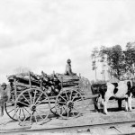 Ox team, 1899. Two boys on a cart loaded with wood, pulled by two oxen. Posed on a road path with a railroad track in the foreground. Scene of Judge H.B. Spooner's farm in Faceville, Decatur County, Georgia.